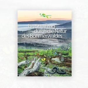 Ein Streifzug durch die Natur des Böhmerwaldes